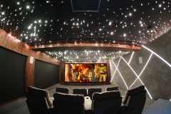 Luxurious-Cinema-from-rear-s